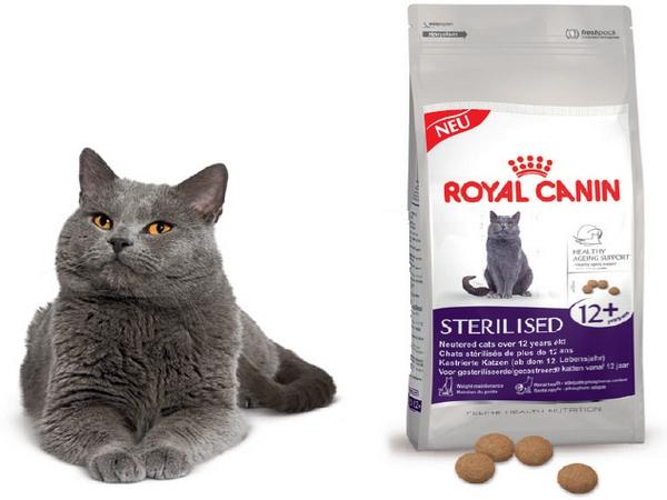 корм для кошек Роял Канин